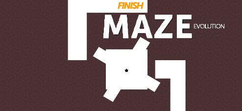 Maze Evolution