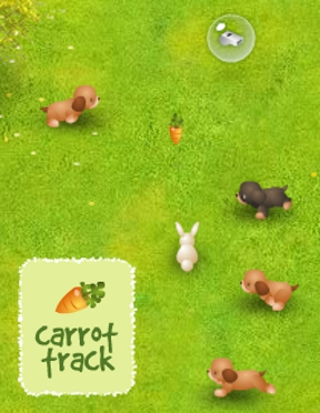 Carrot Track