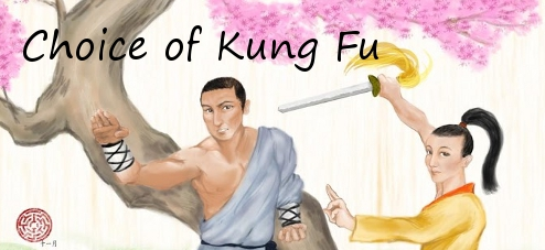 Choice of Kung Fu