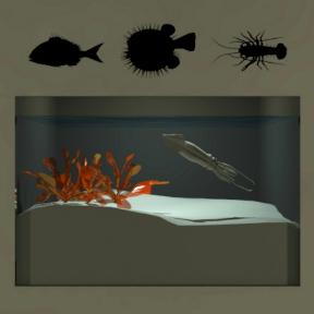 Sunken Room Escape