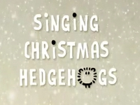 Singing Hedgehogs