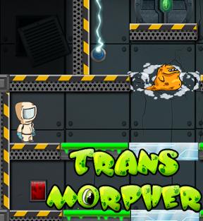 Transmorpher