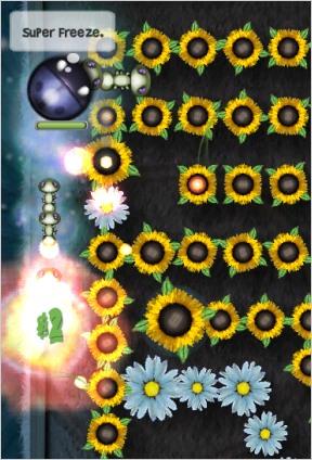 plantthis1.jpg